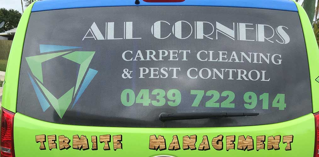 Carpet and Pest Control North Brisbane