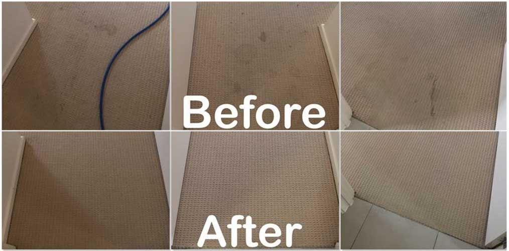 Carpet Cleaning Brisbane North