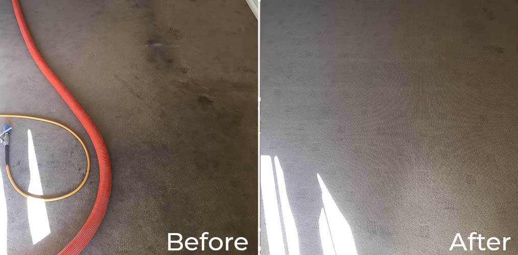 Bond Carpet Cleaning Brisbane North