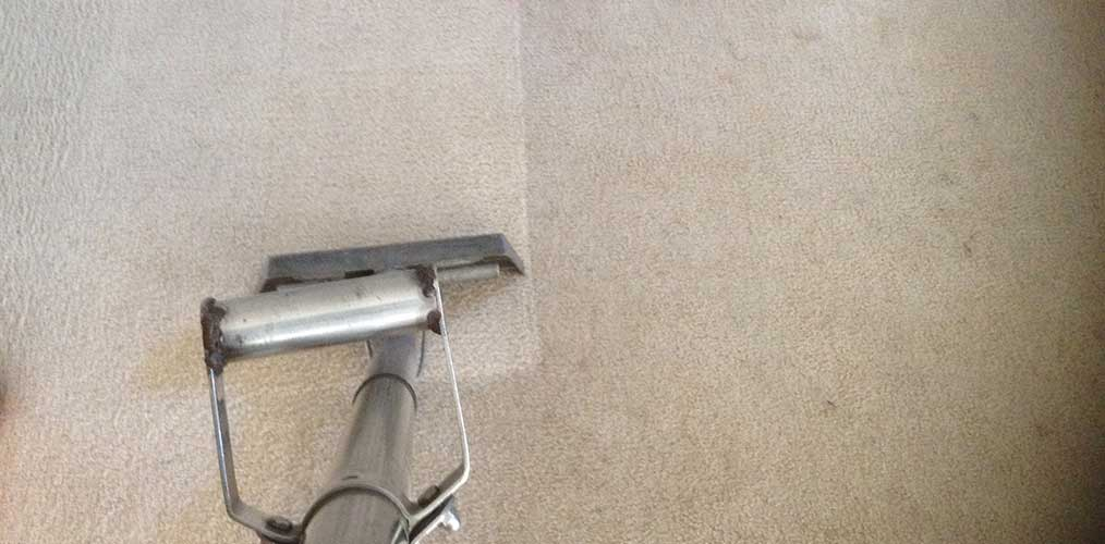 Best time of year to get your carpets professionally cleaned